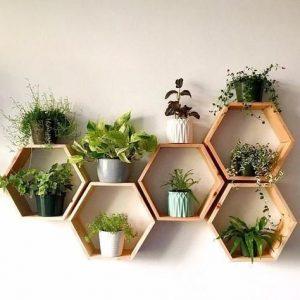 Hexagon polc